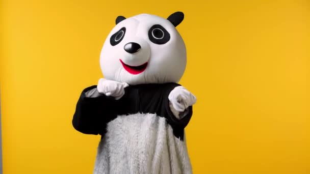 person in panda bear costume threatening isolated on yellow