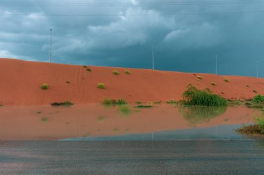 Desert storm clouds contrasted with bold burnt orange colored sand and flooded waters on the sand highlighted green flora and fauna after a storm on the sand dunes.