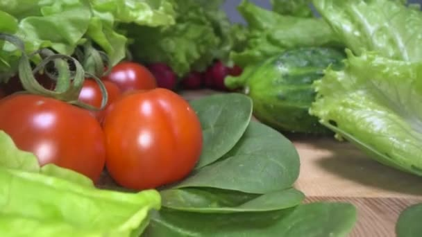Dolly lövés otthon termesztett és betakarított zöldség fából készült asztal háttérben. Siklott a friss saláta, saláta, paradicsom, retek, spenót és uborka. Egészséges étkezési életmód