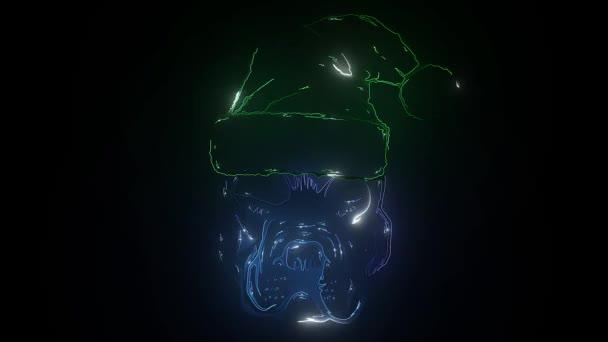 Kutya a Mikulás kalap lézer animáció