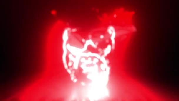 Pitbull a koronában. digitális videó