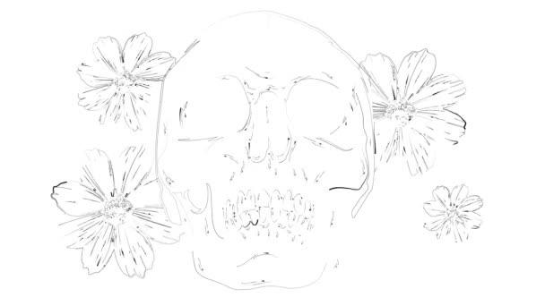 Illusztráció fehér háttérrel. Koponya, rózsa és bazsarózsa virágok. - Igen. Fekete-fehér.