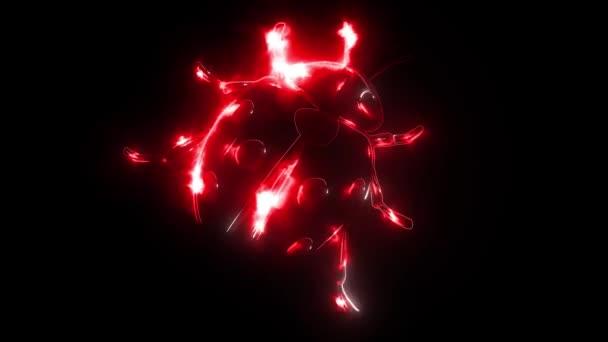 červená beruška na černém pozadí