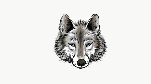 farkas fej kabala digitális videó