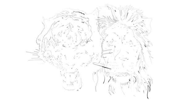 Oroszlán és tigris kombinált arca.