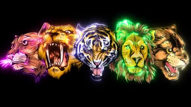 Wild Animals Heads Set. Lion, Tiger, Jaguar, Lynx video