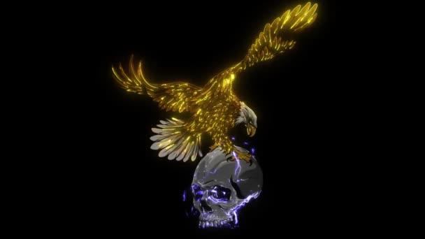 Eagle and Skull design art video