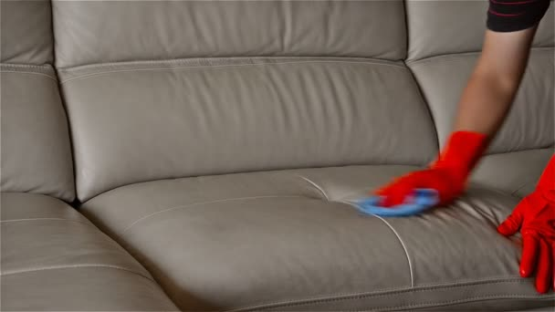 Man Cleaning Leather Sofa At Home U2014 Stock Video