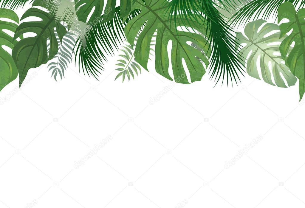 palm tree leaves nature border  u2014 stock vector  u00a9 yokodesign