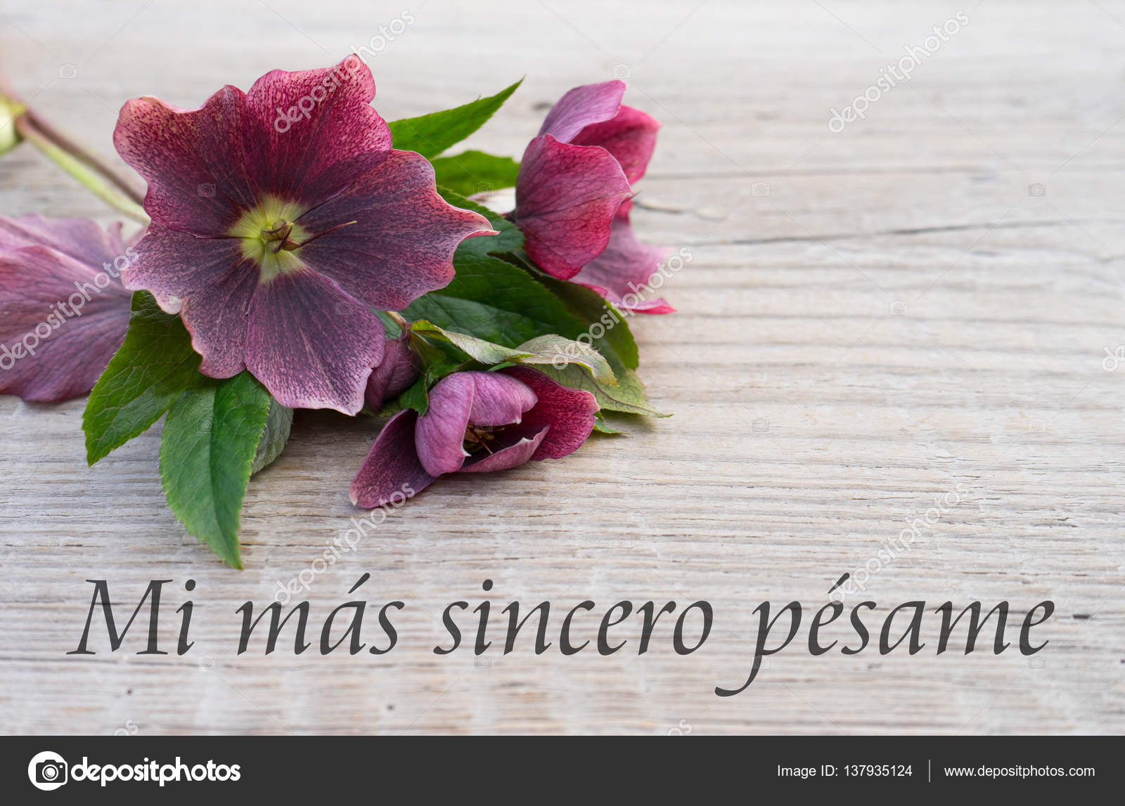 74 best pesame images on pinterest spanish quotes miss you mom
