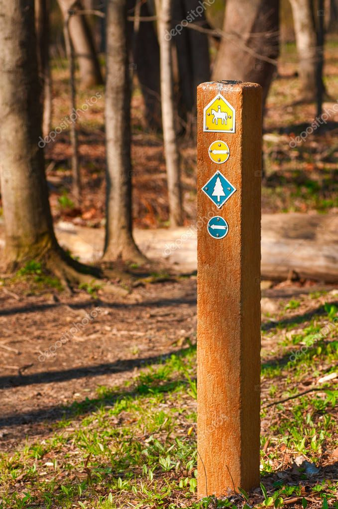 Trail marker in woods