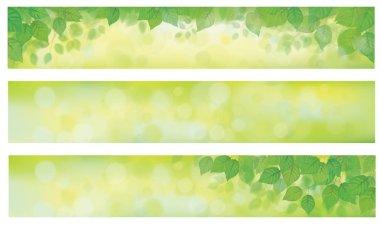 green grass background set