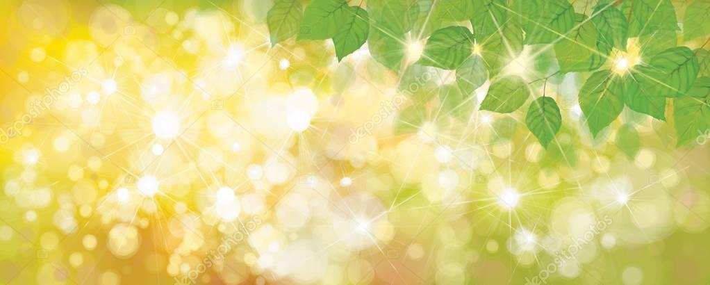green leaves bokeh background