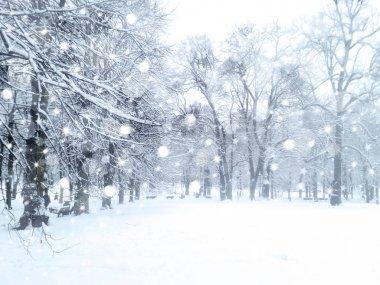 Winter  snowfall landscape