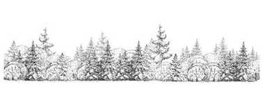 Black and white winter forest isolated on white background on white background
