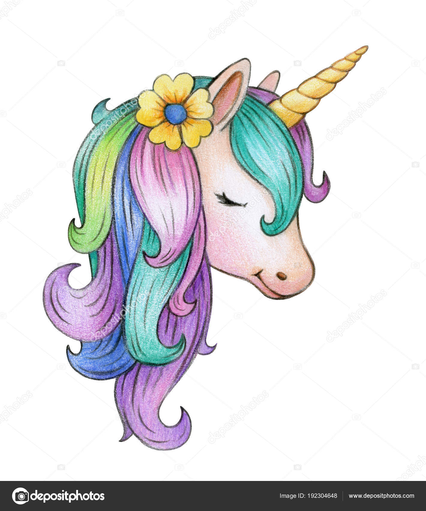 Portrait Colorful Unicorn Isolated White Background — Stock Photo ...