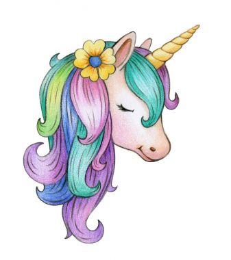 portrait of colorful unicorn isolated on white background