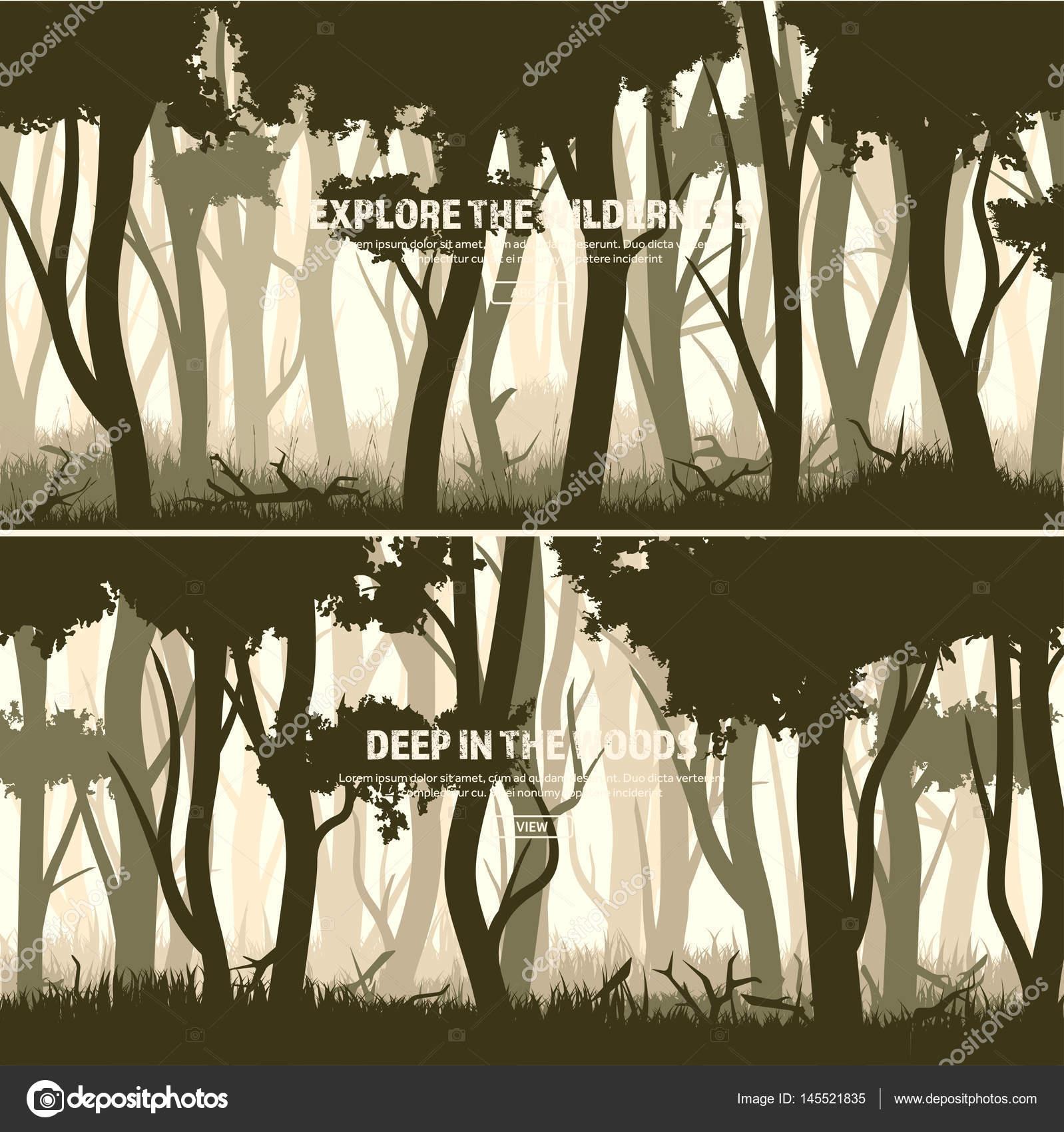 Conjunto de árboles. Bosque de pino silvestre, Fondo de la ...