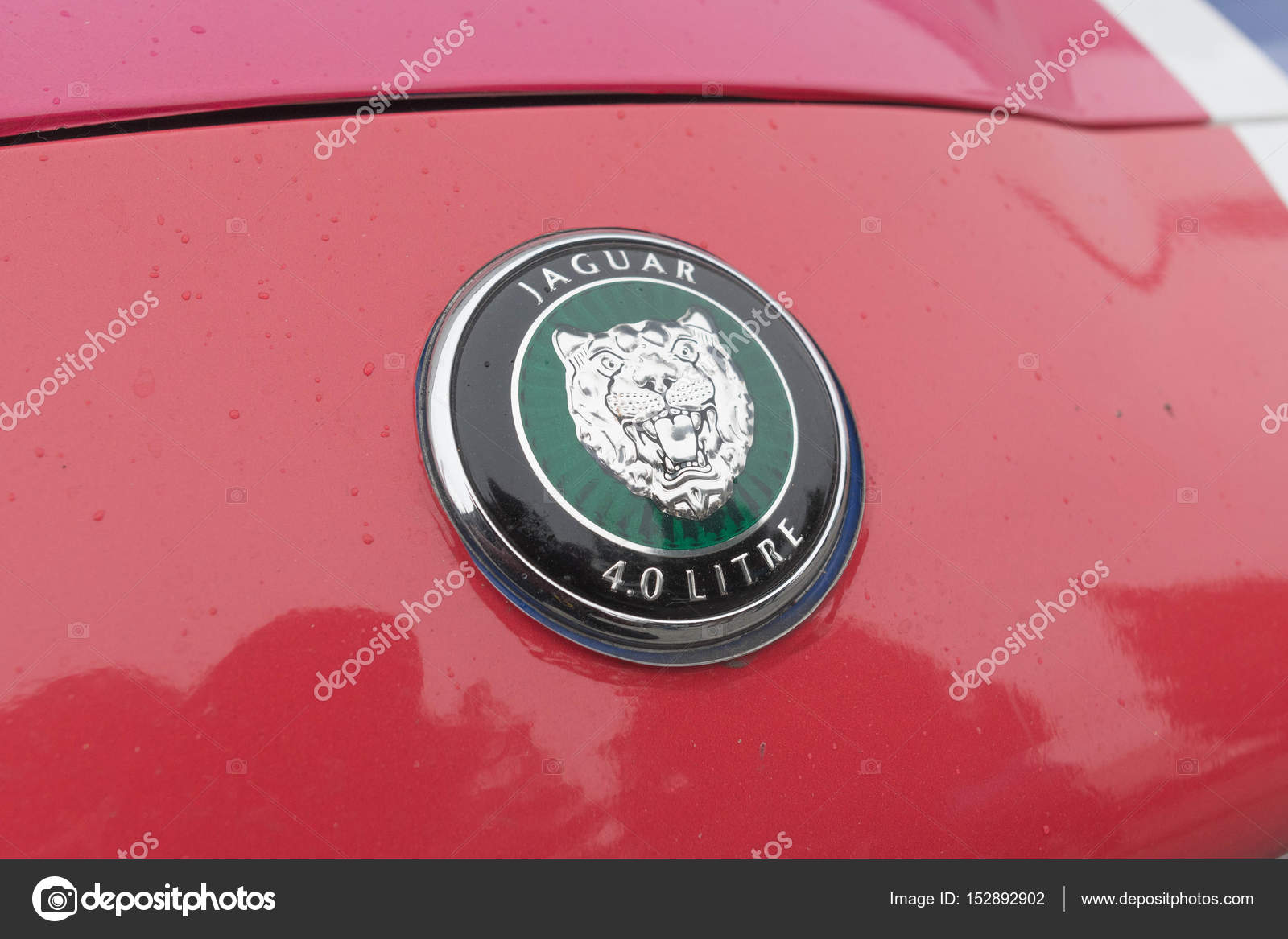 Jaguar emblem on display stock editorial photo bettorodrigues jaguar emblem on display stock photo biocorpaavc Gallery