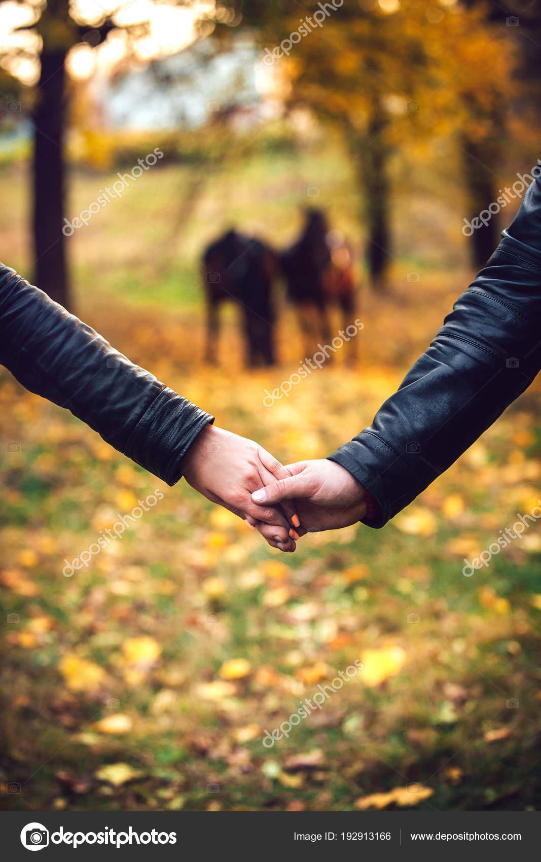 Pár Drží Svých Rukou Datum Parku Podzim Pozadí Koní — Stock fotografie b290ba551b