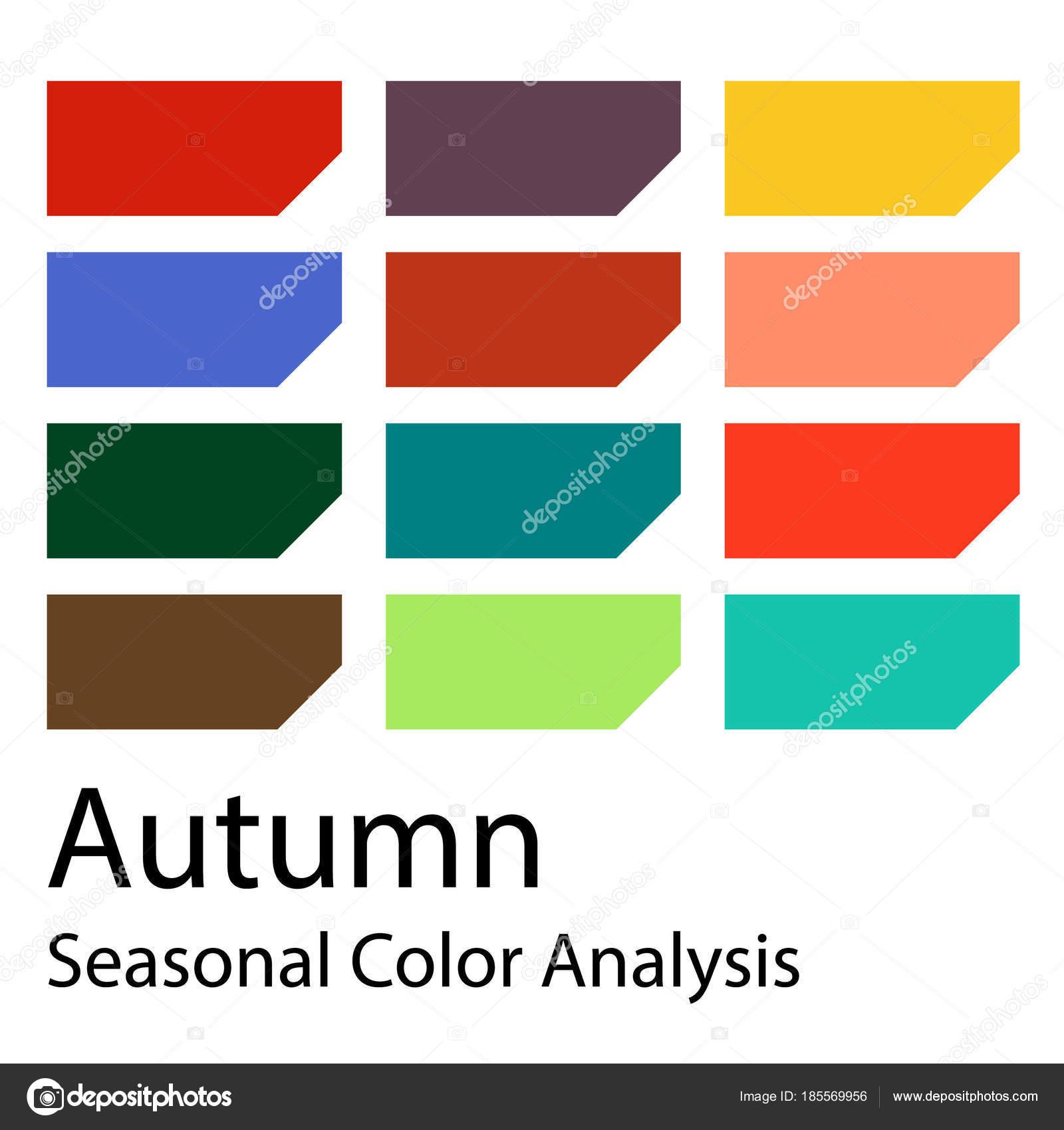 Aktie Vector Farbhilfe Saisonale Analyse Farbpalette Fur Herbsttyp