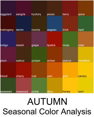 Stock vector color guide with color names. Seasonal color analysis palette for autumn type. Type of female appearance