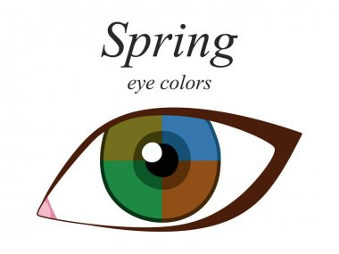 Stock vector seasonal color analysis palette for spring type of female appearance. Eye colors for spring type.
