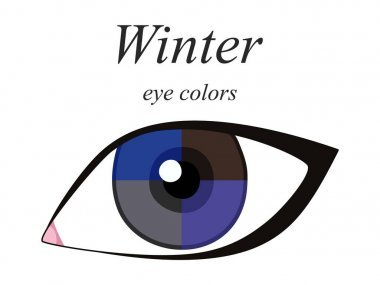 Stock vector seasonal color analysis palette for winter type of female appearance. Eye colors for winter type.