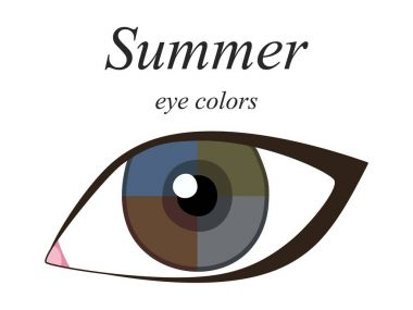 Stock vector seasonal color analysis palette for summer type of female appearance. Eye colors for summer type.