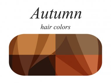 Stock vector seasonal color analysis palette for autumn type of female appearance. Hair colors for autumn type.