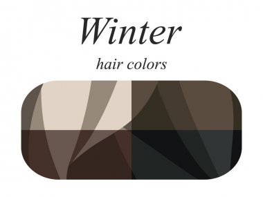 Stock vector seasonal color analysis palette for winter type of female appearance. Hair colors for winter type.