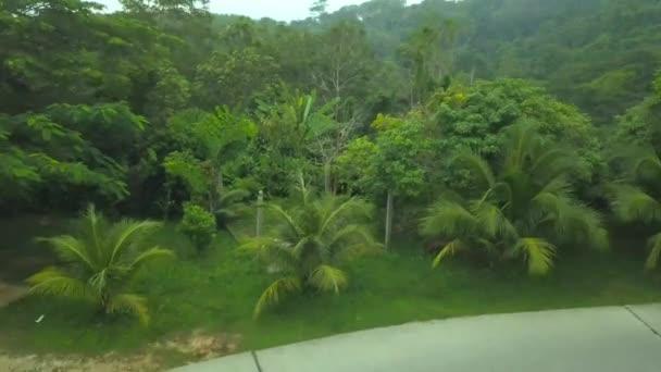 Blick von oben auf den Dschungel in Phuket, Thailand. Langsam nähert sich die Drohne dem Wald. Sichtbare Palmen, Gras, Bäume, Straße.