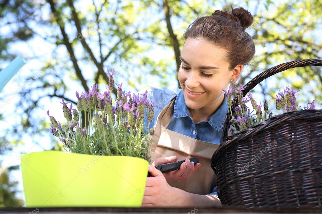 Floral composition. lavender