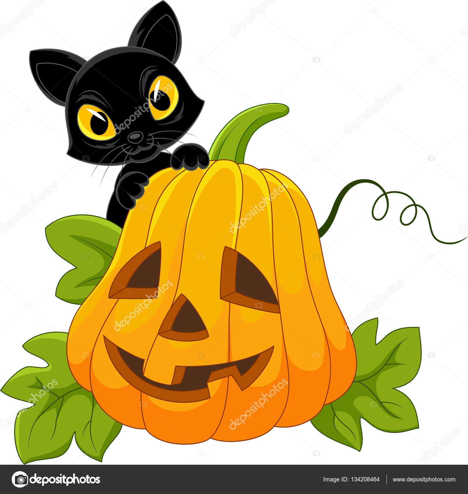 Süße leere Katze mit Halloween-Kürbis — Stockvektor © tigatelu ...
