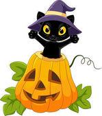 Halloween tök aranyos fekete macska