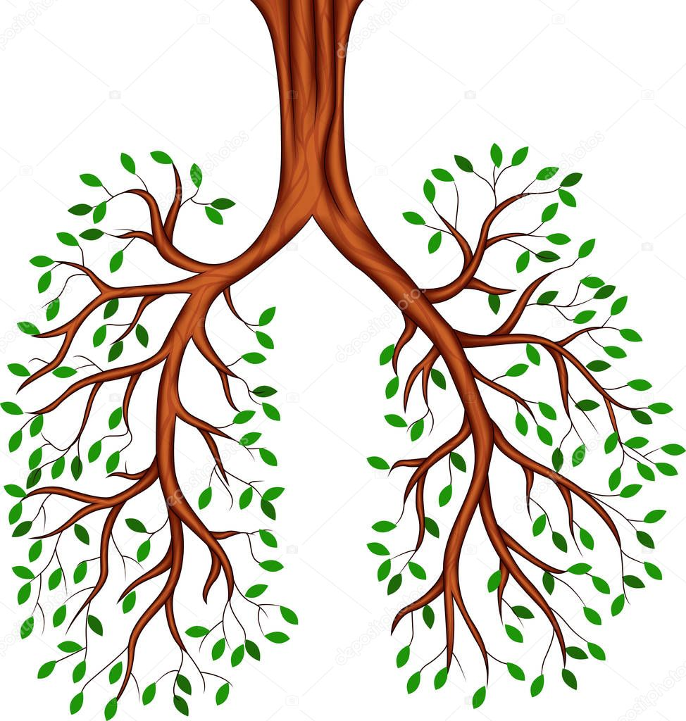 Tree lungs cartoon,