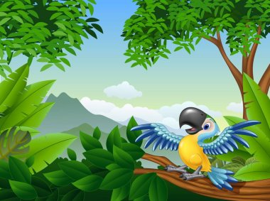 Cartoon macaw in the jungle