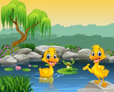 Cute ducks swimming on the pond and frog