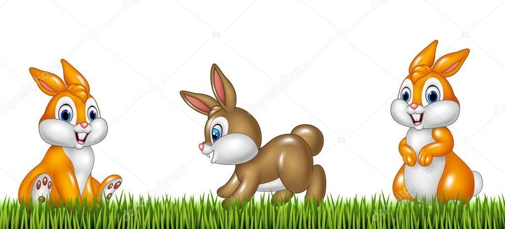 Conejos De Dibujos Animados Sobre Fondo De Hierba