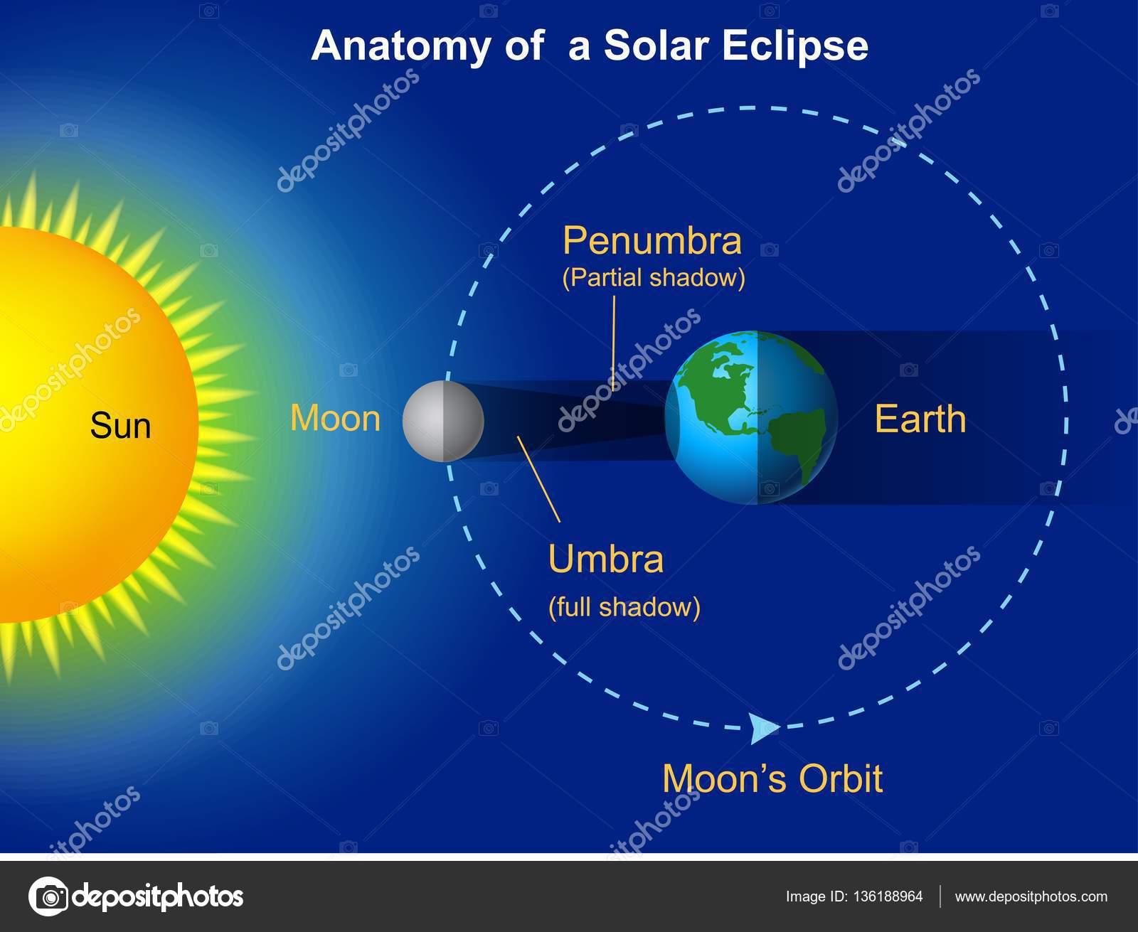 Solar eclipse diagram stock vector tigatelu 136188964 solar eclipse diagram stock vector pooptronica Image collections
