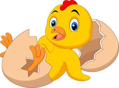 Cartoon new born chick