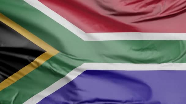 Flag of South Africa 3D