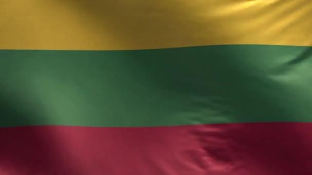 Litevská vlajka smyčka 3d