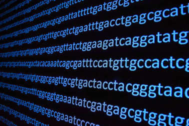 Genome sequencing.