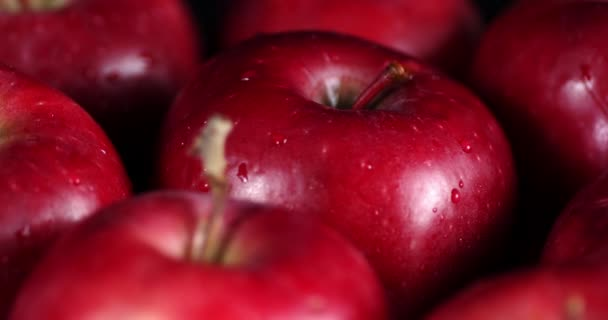 Rotating fresh red apples with water drops .