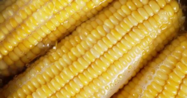 Kukuřice vroucí ve vodě se vzduchovými bublinami.