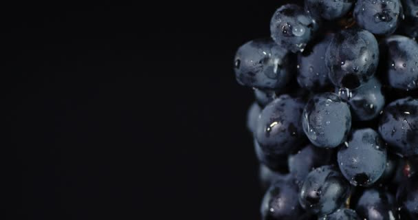 Drops of water falling on a bunch of black grapes.