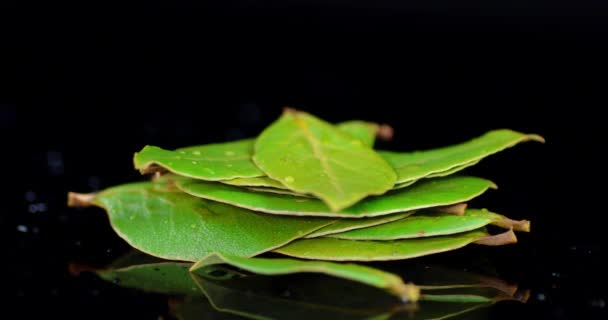 A pile of Bay leaves rotates slowly.