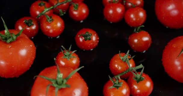 Große und kleine Tomaten auf dem Tisch.