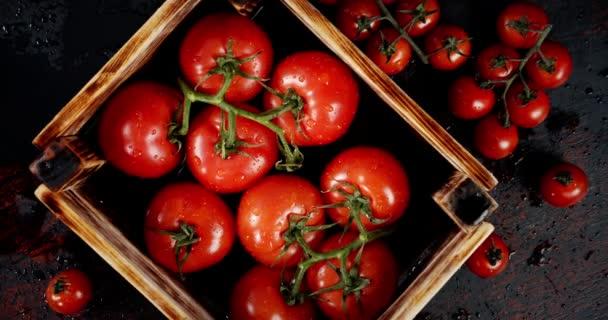 Schachtel mit frischen Tomaten dreht sich langsam.